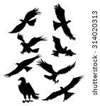 eagle silhouette set | Shutterstock .eps vector #314020313