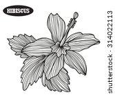 elegant decorative hibiscus... | Shutterstock .eps vector #314022113