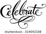 celebrate | Shutterstock .eps vector #314042108