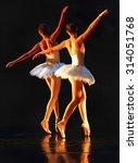 unrecognizable ballet dancers...   Shutterstock . vector #314051768