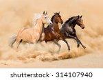Three Horse Run In Desert Sand...