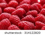 Red Raspberry Background  Clos...