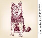 dog hand drawn vector... | Shutterstock .eps vector #314177378