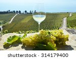 wine and grapes. lavaux ... | Shutterstock . vector #314179400