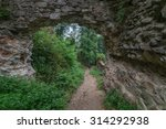 old castle ruins on green thick ... | Shutterstock . vector #314292938