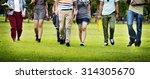 college park garden... | Shutterstock . vector #314305670