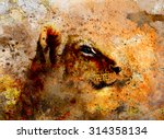 Little Lion Cub Head. Animal...