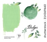 watercolor art hand paint green ... | Shutterstock . vector #314369660
