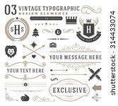 Retro vintage typographic design elements. Arrows, labels, ribbons, logos symbols, crowns, calligraphy swirls, ornaments and other.  | Shutterstock vector #314433074