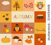 autumn icons | Shutterstock .eps vector #314434448
