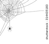 Spider And Web Isolated On...