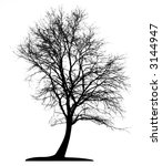 tree  vector  | Shutterstock .eps vector #3144947