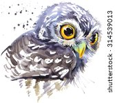 Stock photo cute owl watercolor illustration arctic nature forest animal wildlife night hunter 314539013