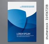 vector blue brochure  annual... | Shutterstock .eps vector #314567258