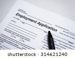 completing an job application... | Shutterstock . vector #314621240