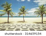 palms with mosaic on empty...   Shutterstock . vector #314659154