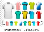 collection of various soccer...   Shutterstock .eps vector #314663543