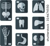 set of x rays flat icon | Shutterstock .eps vector #314674550