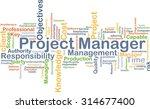 background concept wordcloud... | Shutterstock . vector #314677400
