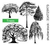 autumn summer spring forest... | Shutterstock .eps vector #314725973