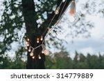 garland of light bulbs hanging... | Shutterstock . vector #314779889