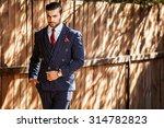 elegant handsome man in... | Shutterstock . vector #314782823