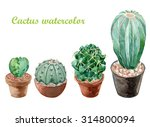 many cactus watercolor painting ... | Shutterstock . vector #314800094