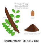 Superfood Carob Vector Set Wit...