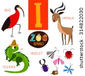 Cute Zoo Alphabet In Vector.i...