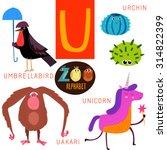 cute zoo alphabet in vector. u... | Shutterstock .eps vector #314822399