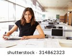 young female architect working... | Shutterstock . vector #314862323
