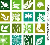 collection of nature elements   Shutterstock .eps vector #314885099