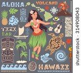 vector vintage set of hawaiian... | Shutterstock .eps vector #314908043