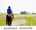 Girl Riding A Horse In A Field.