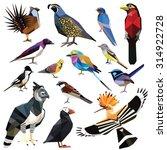 Постер, плакат: Birds set colorful birds low