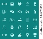 fitness color icons on green... | Shutterstock .eps vector #314990318