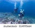 Scuba Diver With A Camera Swim...