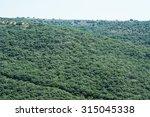 forest hills | Shutterstock . vector #315045338