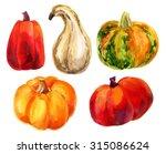 Pumpkin Set. Watercolor...