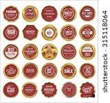 vector badges of golden set | Shutterstock .eps vector #315118064