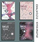 set of flyer  brochure design... | Shutterstock .eps vector #315147443