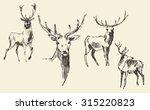 Set Of Deers  Engraving Style ...