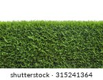 green floral hedge isolated  on ... | Shutterstock . vector #315241364