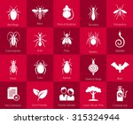 Vector Icons Of Pest Insects...