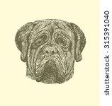 Sketch Mastiff In Vintage Styl...
