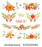 cute floral bouquets.  design... | Shutterstock .eps vector #315429440