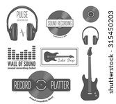 set of badge label  sticker ... | Shutterstock .eps vector #315450203