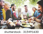 diverse yard summer friends fun ... | Shutterstock . vector #315491630