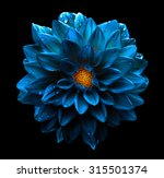 Surreal Dark Chrome Blue Flowe...