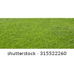 green grass isolated on white... | Shutterstock . vector #315522260